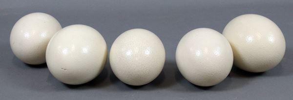 Cinque uova di struzzo, altezza max cm. 16 (difetti, uno presenta rottura).