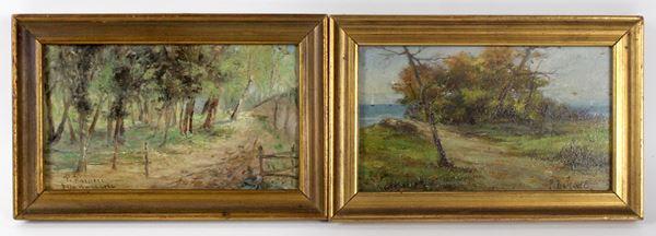 Coppia di paesaggi, olio su tavola, cm 10,5x18, firmati P. Barucci, entro cornice